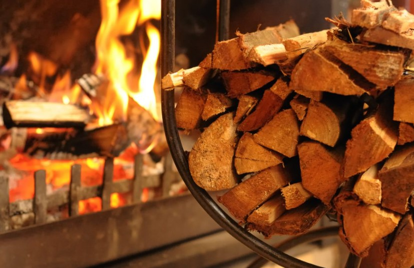 Firewood - How Should Firewood Be Stored and Dried